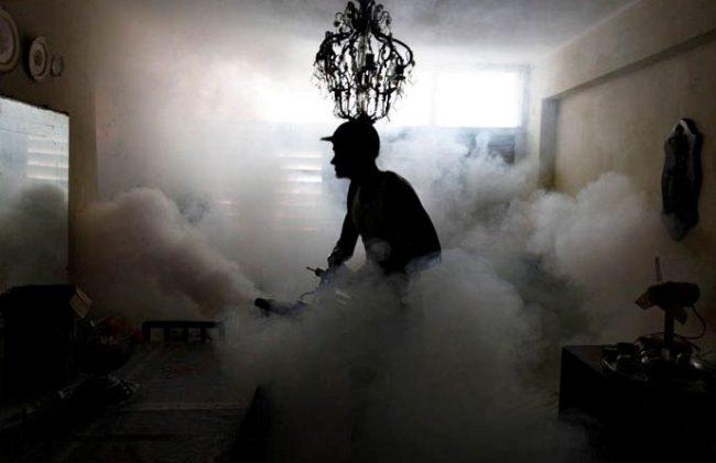 дезинсекция холодным туманом