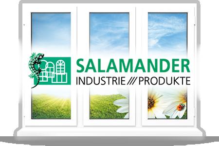 Окна от компании salamander